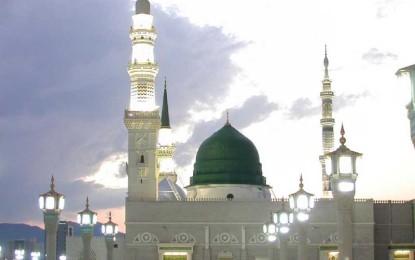 Ç'thonë të tjerët për Profetin Muhamed (a.s.)